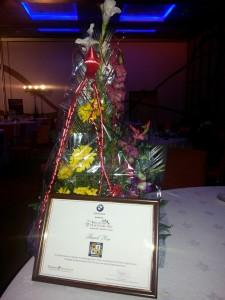healthcarepro-2014-prize1